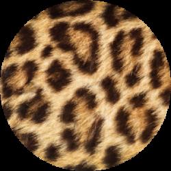 leopard-fur
